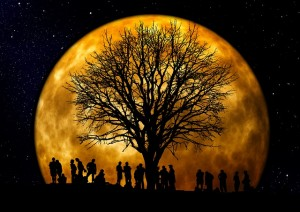 moon tree people