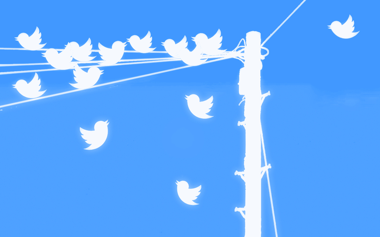 Tweeting birds twitter tweet